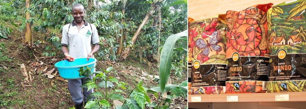 Kaffeebauer Mbale in seinem Bio-Kaffeegarten, Kinone, Uganda & der bio-faire Kaffee Jambo aus Uganda bei Chic Ethic im Shopregal