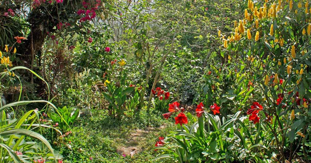 Bio-Garten Carmelina