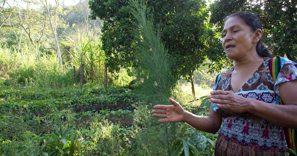 Carmelina in ihrem Bio-Misch-Garten